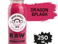 RAW Smoothie - Dragon Splash