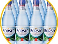 Apă Borsec minerala