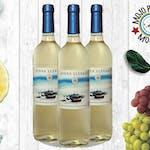 Vinya Llevant Białe