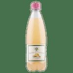 Bad Brambacher - Zahradní grepová limonáda - bez Éček a konzervantů