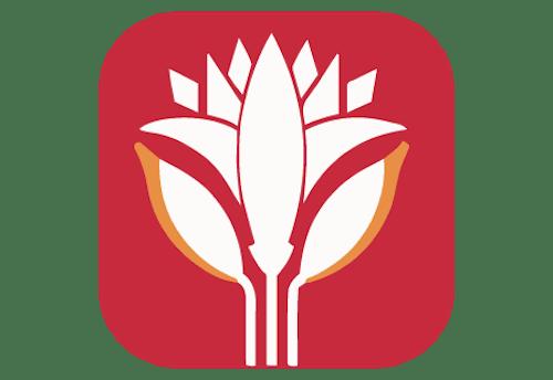 Lotus Kebab