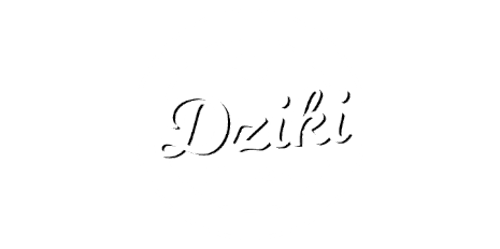 Dziki Fit Catering