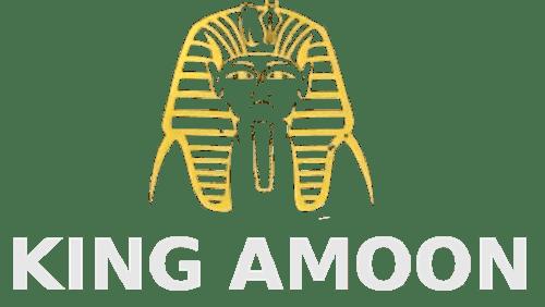 King Amoon Kebab